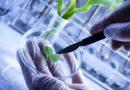 Il Consiglio Ue riapre la partita sulle nuove biotecnologie in agricoltura