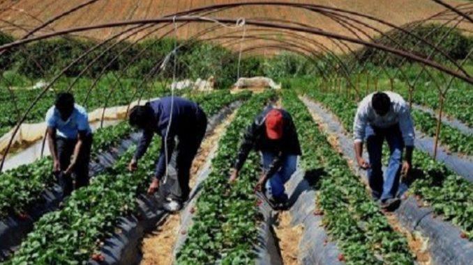 Positiva la proroga dei permessi di soggiorno - Agrigiornale