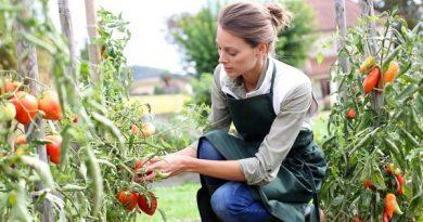 Italia leader Ue in giornata donne rurali