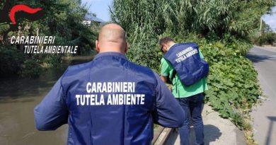 48 arresti per truffe a fondi Ue