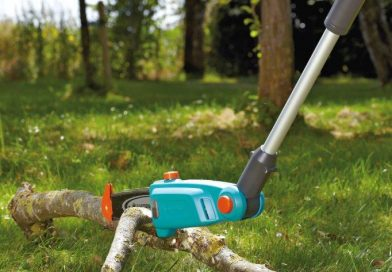Siepi, alberi e cespugli: sempre curati e rigogliosi con Gardena