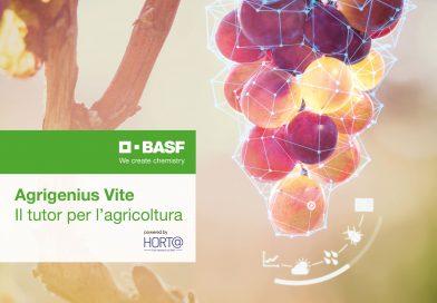 Con Agrigenius Vite, BASF promuove la gestione sostenibile dei vigneti italiani