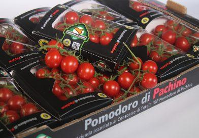Pomodoro Pachino Igp dal campo alla tavola sempre più trasparente e tracciabile