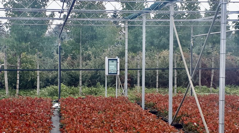 L'agricoltura diventa smart e con l'Internet of Things ottimizza le coltivazioni, risparmia acqua e tempi di monitoraggio