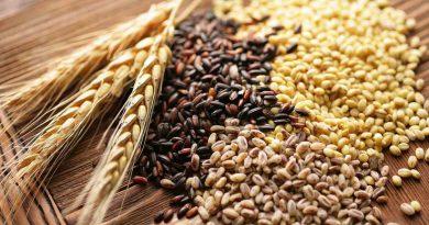 Import/export cerealicolo in Italia nei primi tre mesi del 2021
