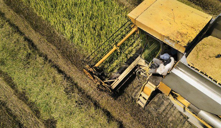 Bayer lancia il suo programma di decarbonizzazione per l'agricoltura in Europa