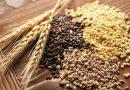 Import/export cerealicolo in Italia nei primi quattro mesi del 2021